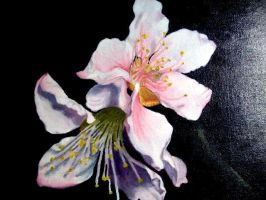 Picture of a Painting_Flowers by I-rE-nA-216