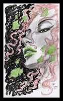 poison Ivy 28 by Gary Shipman by G-Ship