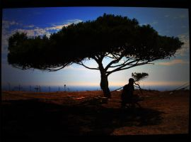 a man and a tree by AlexandrovichS