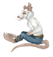 Ratty by Wolfiesprite