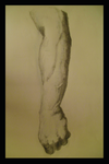 Anatomic Sketch No 2 by mustrainer