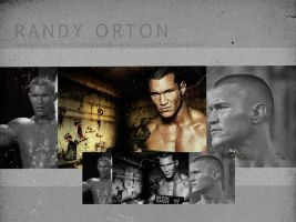 Randy Orton - Wallpaper by me969