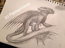 .:Have a Toothless:. by FlamesVoices