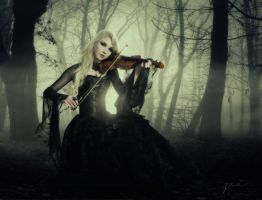 the violin by zei by zeiruch