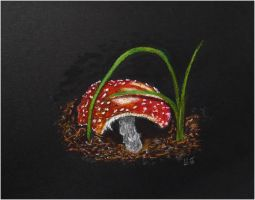 A Gnawed Mushroom's Contact With Pastel by lomartistic