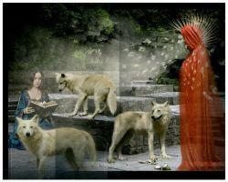 Canis Tales... by metalromantica