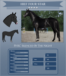 Silenced by the Night HIEF 4*Horse by PartilleHSC