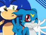 RQ: Sonic and Veemon by ss2sonic