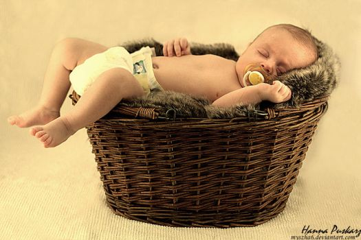 A baby in the basket by myszha6