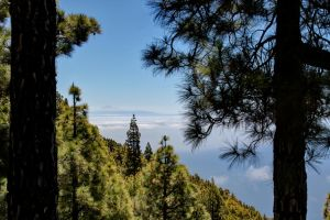 Teide in the Distance by freddythefreeloader