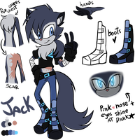 Jack sonic style ref sheet by G-Blue16
