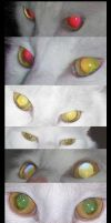 Cat's Eyes by Leonca