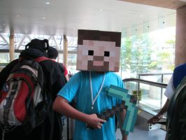 Minecraft cosplay by NotoriousDogfight