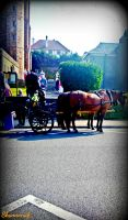 Horse Cart by Shannonab
