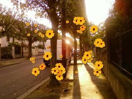 Flowerss by SharkVamps