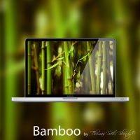 Bamboo by Thomas 'Seth' Blondy by Thomas-Seth