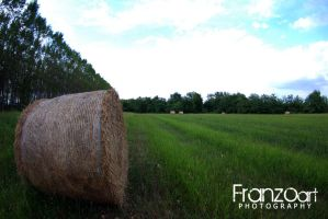 Campagna by Franzoart