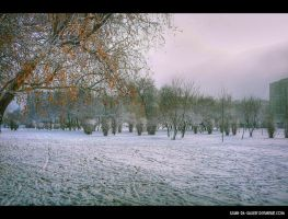 freezing by Iulian-dA-gallery