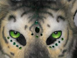Tiger Face Closeup by MaewynShadowtail
