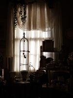 Antique View by beverly546