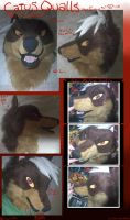 Caius Qualls Mask Overview by MoonHunter02