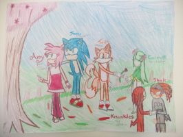 Sonic Couples by BladerGirl101