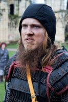 Vikings 2011 stock 2 by Random-Acts-Stock