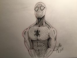 Spider-Man by joelmai