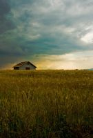 Just a house in the field by StetoCina