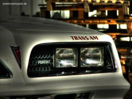 Trans Am III by AmericanMuscle
