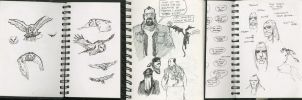 Sketchbook or Daybook 023 by hesir