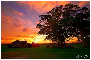 Cabbage Tree Point Sunset by jaydoncabe