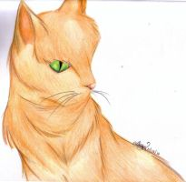 Fireheart Practice by alisterbabeh2006