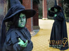 Elphaba wicked witch collage by saethewitch
