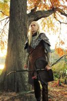 Prince of Mirkwood by celticruins