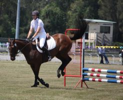 STOCK Showjumping 424 by aussiegal7