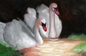 ACEO swans love by lovelylittlesunshine