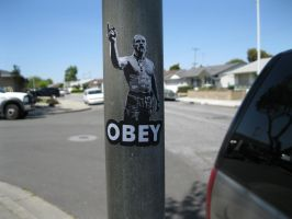 Techno Viking Says OBEY by theraineydaze