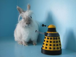 Luma and dalek again by michaela1232001