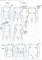 How to Draw different body types by takaya-ame