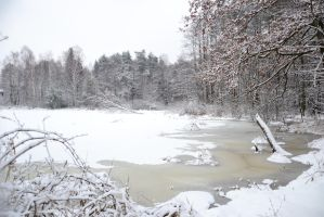 Frozen Pond by feainne-stock