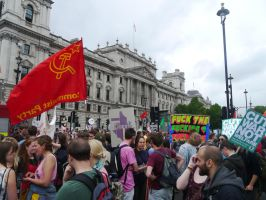 Whitehall Protesters by Party9999999