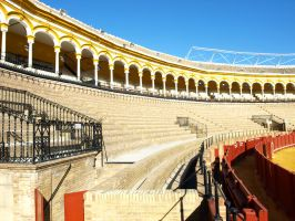 Seville Bull Fight Festival 08 by abelamario