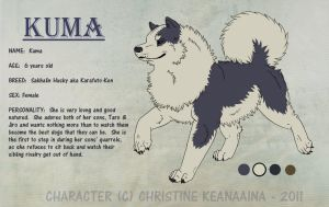 Kuma Ref Sheet by Avalanche-Design