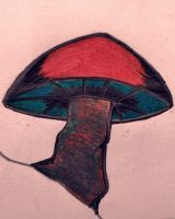 just another shroom by Brenna0469