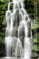 Green Water 2 by asylumimages