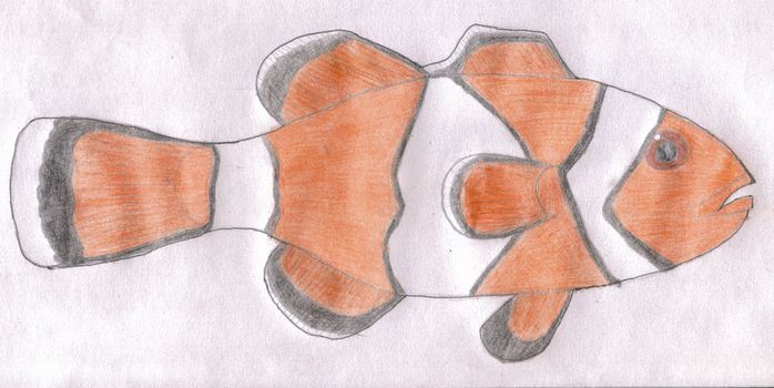 Clown fish by AJE2995