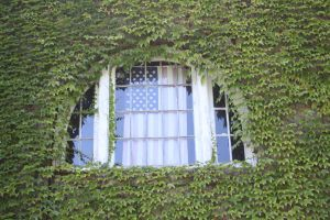 Eolia Carriage House Window by Maeve09