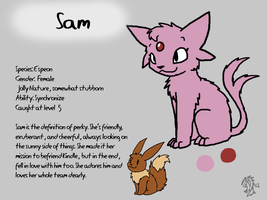 Sam Reference Sheet by DragonwolfRooke