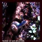 The Gastropod by Vision-Of-Escaflowne
